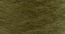 698 Olive