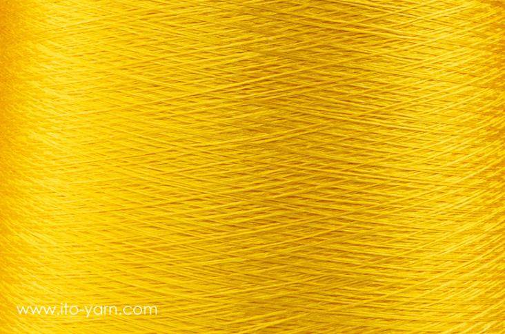 ITO_Iki_1232_Sunflower